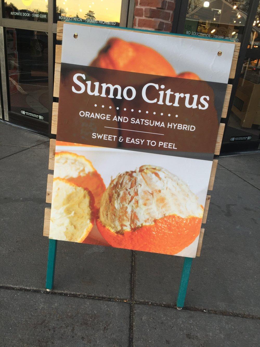sumo-citrus.JPG
