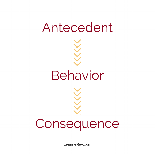ABCs of behavior observation
