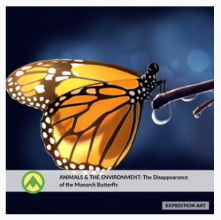 The Disappearance of the Monarch Butterfly
