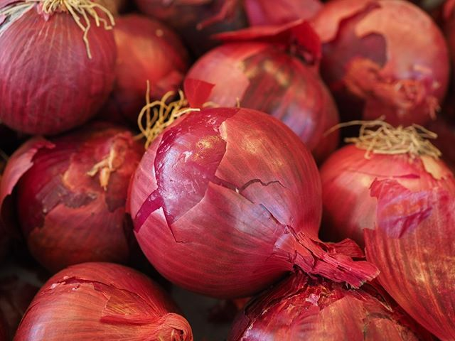 Random fact #118: Red onions are native to three distinctly different regions; Turda in Romania, Tropea in Italy, and Connecticut in the US. ⠀⠀⠀⠀⠀⠀⠀⠀⠀ ⠀⠀⠀⠀⠀⠀⠀⠀⠀ #vegan #veganfood #veganfoodlovers #veganfriendly #veganfoodie #veganrecipes⠀⠀⠀⠀⠀⠀⠀⠀⠀ #vegetarian #vegetarianfood #glutenfree #keto #ketodiet #ketofood ⠀⠀⠀⠀⠀⠀⠀⠀⠀ #healthy #mealprep healthyfood #americanbbq #southernbbq #lowandslow #lownslow #food #foodie #hotsauce #hot #sauce #chilli #chillilover #spicy #spicyaf #artisan #artisansauce