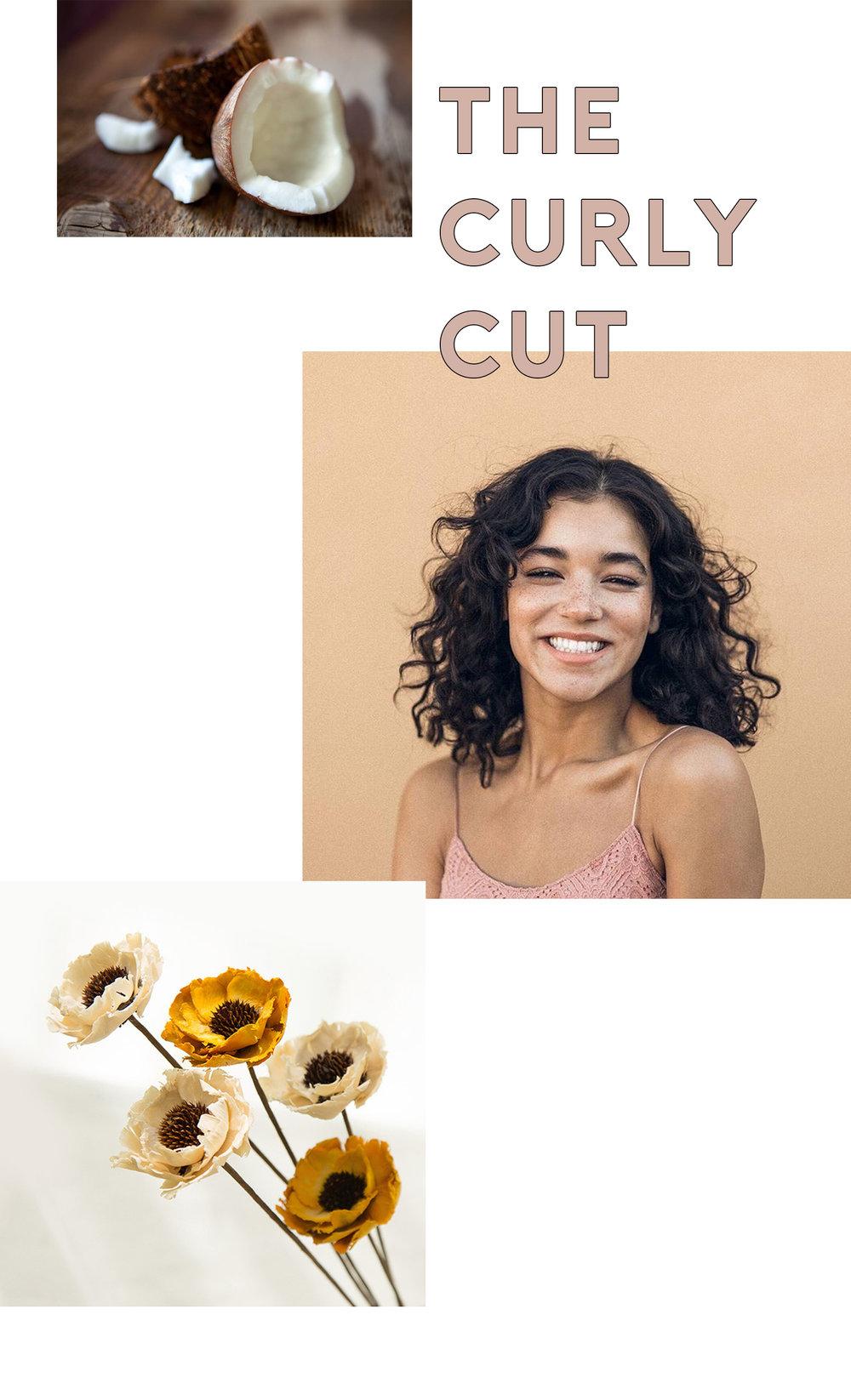 thecurlycut2.jpg