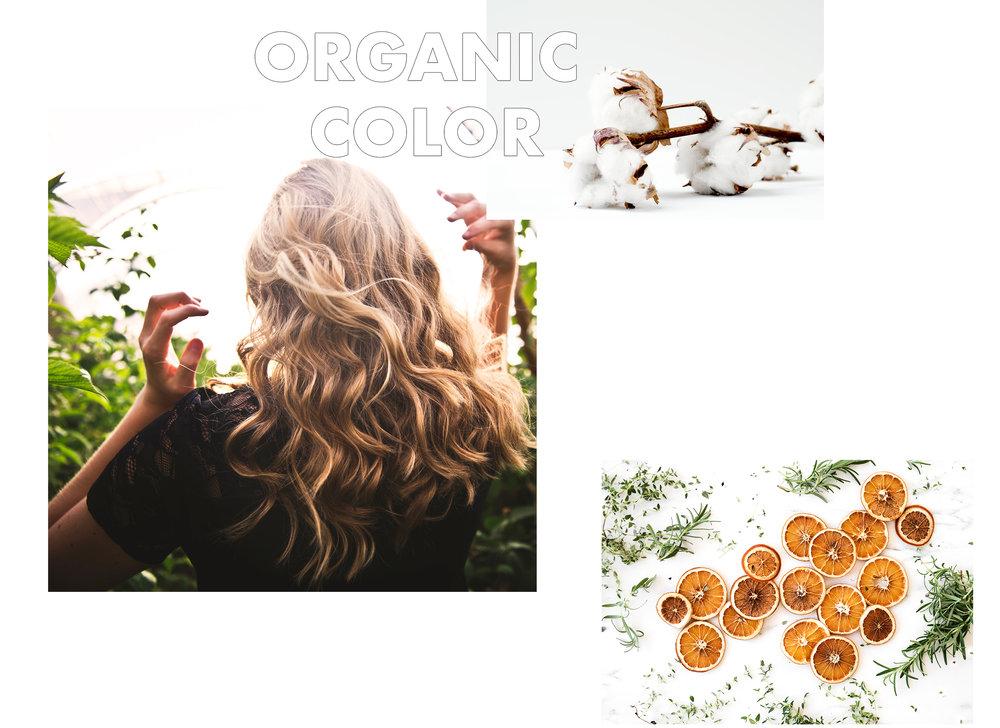 Organiccolor.jpg
