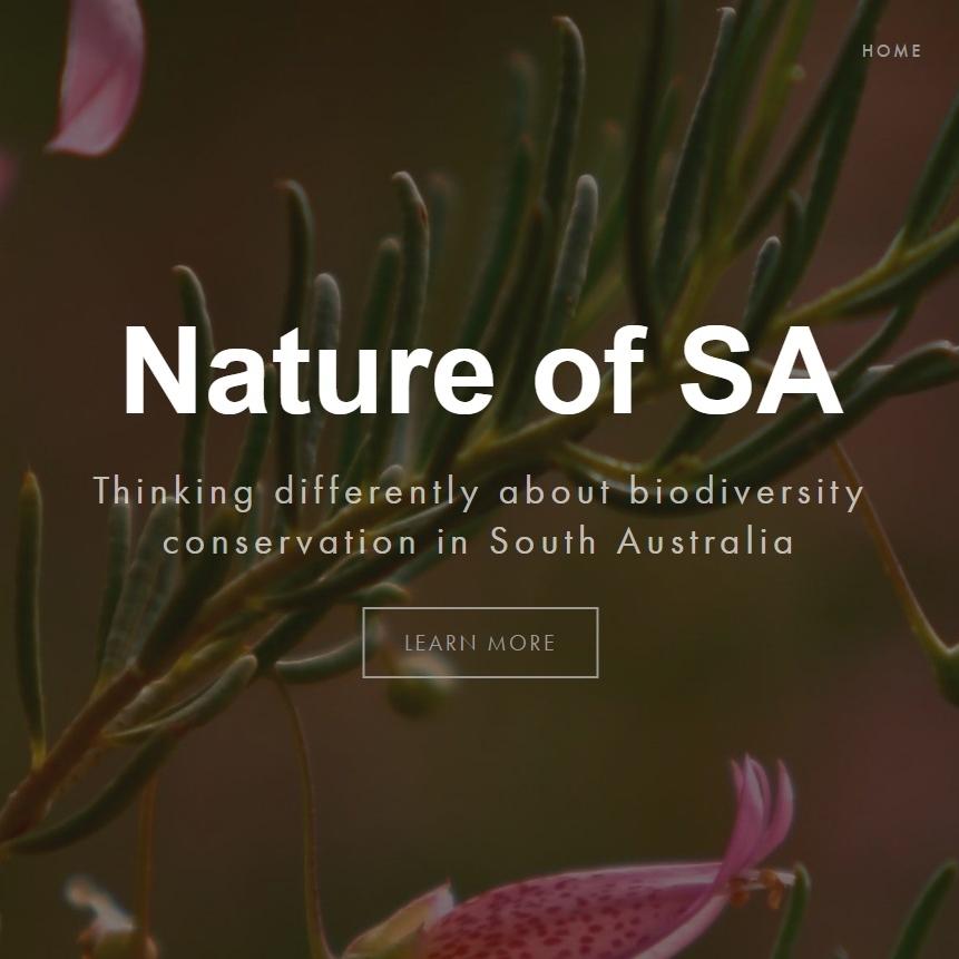 Nature of SA.jpg