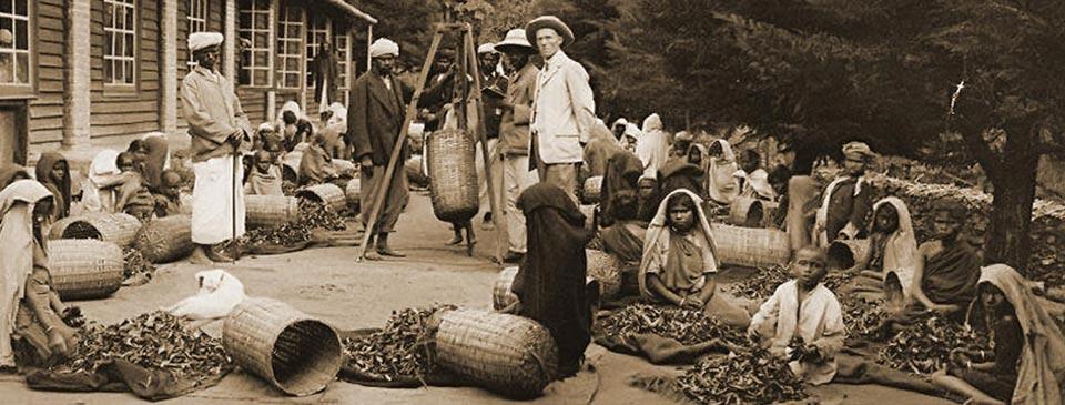 British planter with tea estate labourers