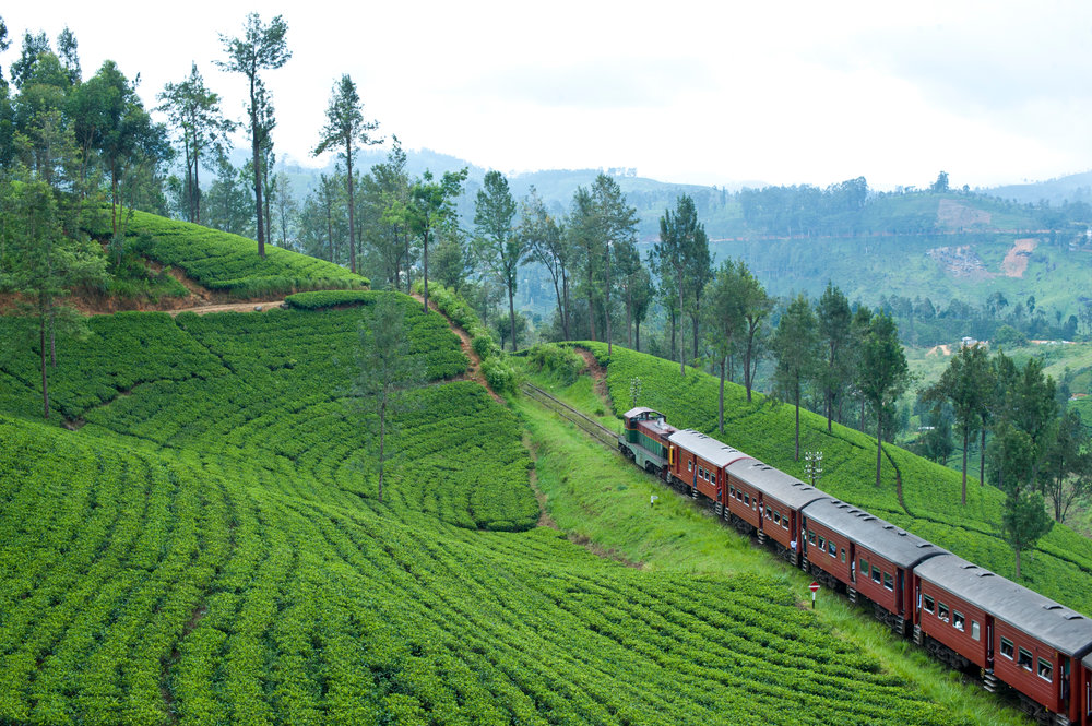 Train journey through tea plantations in Sri Lanka