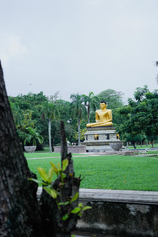 Buddha statue at Viharamahadevi Park