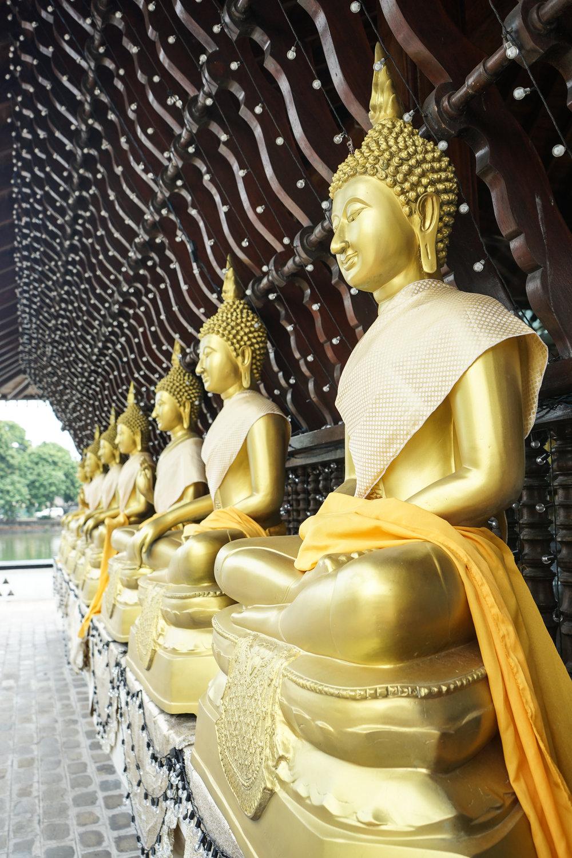 The golden meditating Buddhas