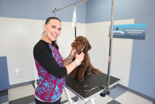 Full service dog cat grooming professional pet groomers scrubbers full serviceg solutioingenieria Gallery