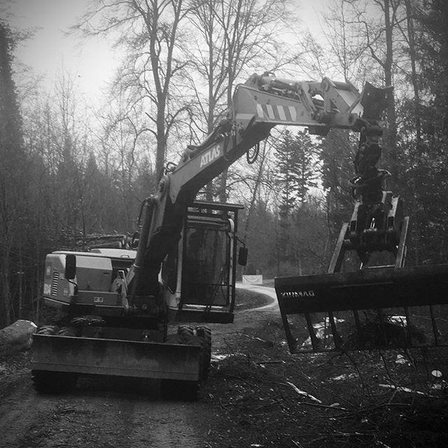 #Atlas1304#kirmag#reisigrechenL#logging#