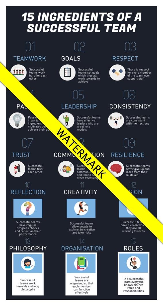 15 ingredients of a successful team_wm.jpg