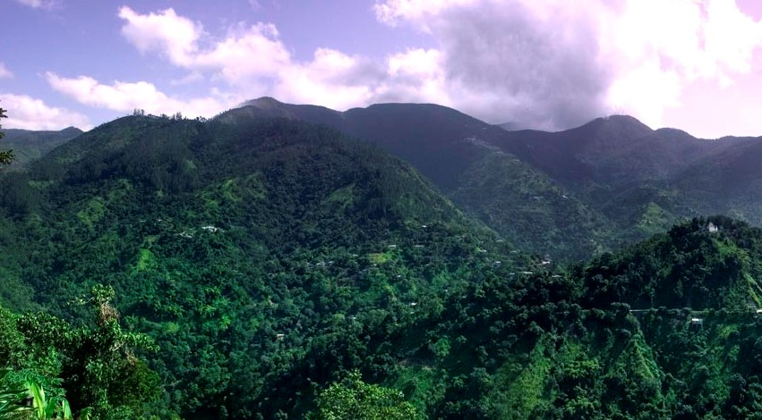 Jamaica aerial photo.jpg