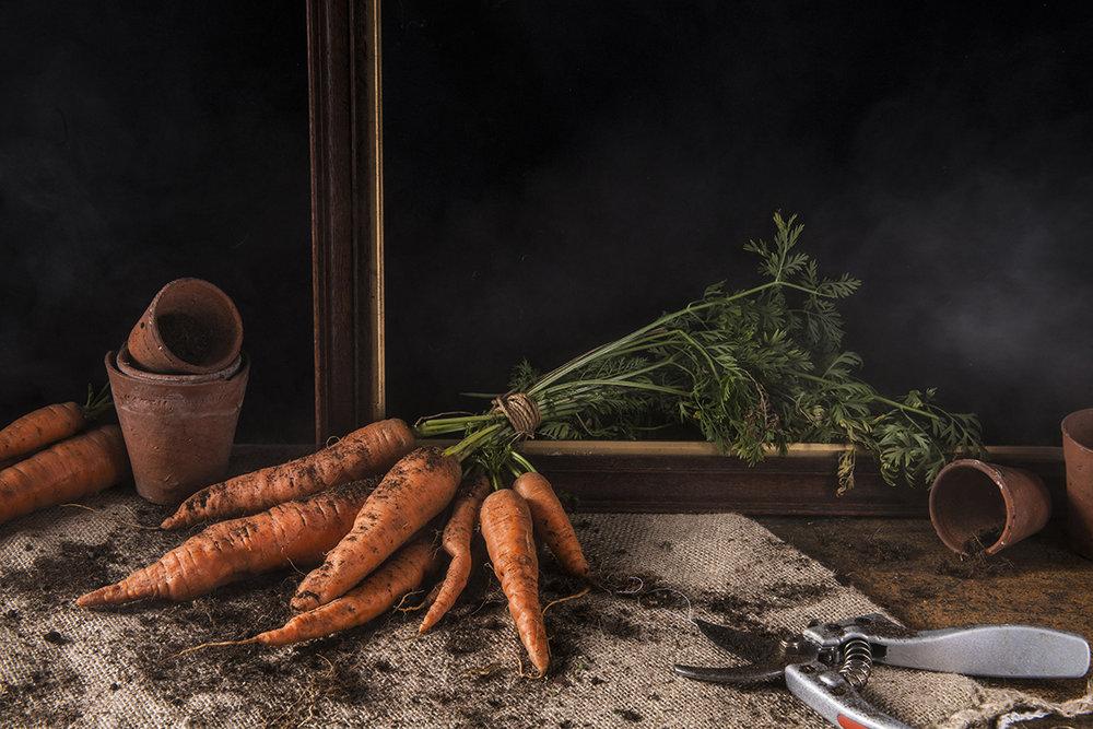 carrots sm.jpg