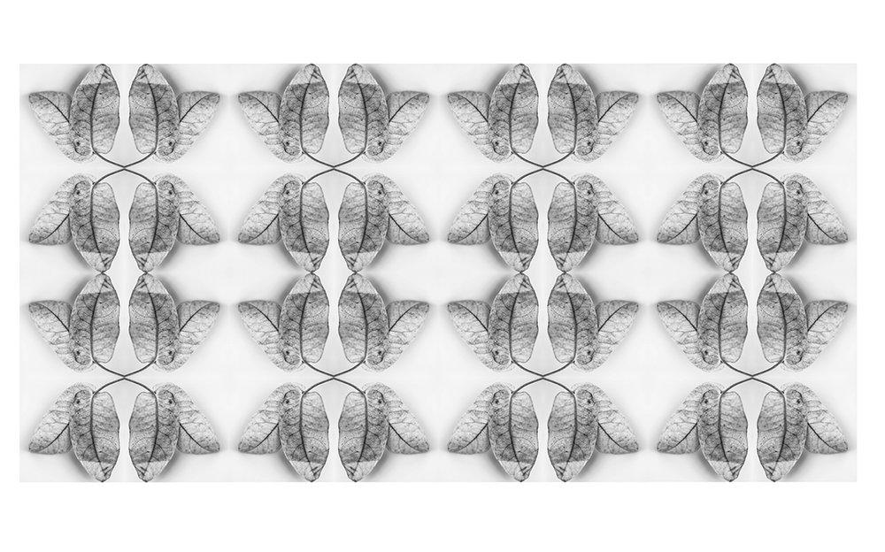 leaf 1 wall paper.jpg
