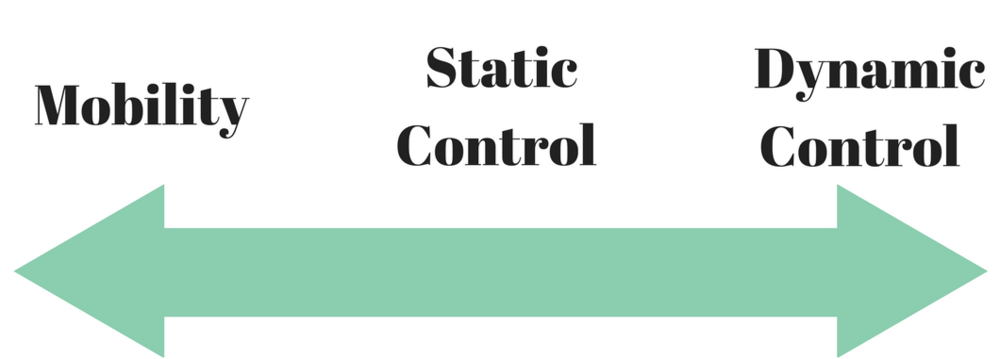 The Mobility - Motor Control Continuum