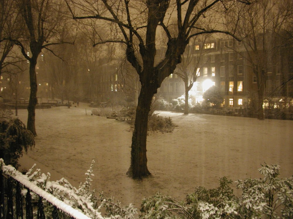 Snowy Night.JPG