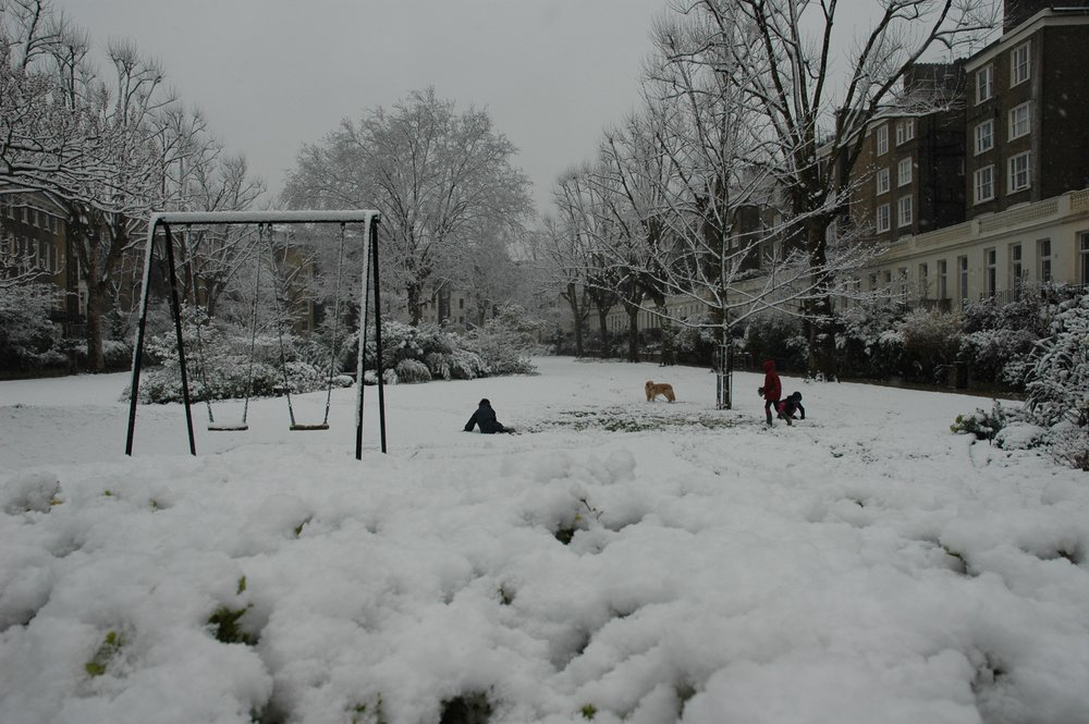 Snowy Swings.JPG