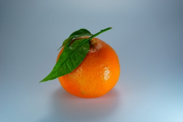 orange-mandarin-clementine.jpg