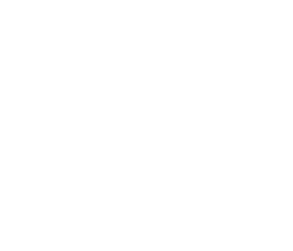115 COLLECTVE
