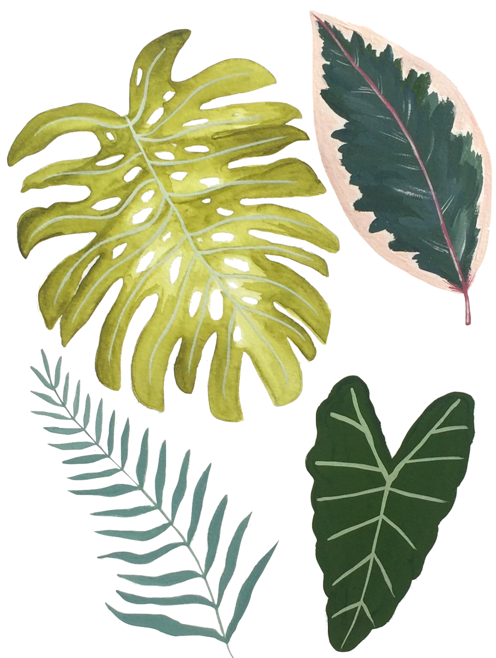 Leaves big.png