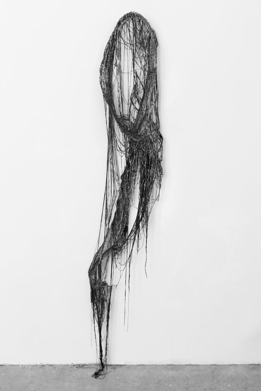 Lauren Seiden