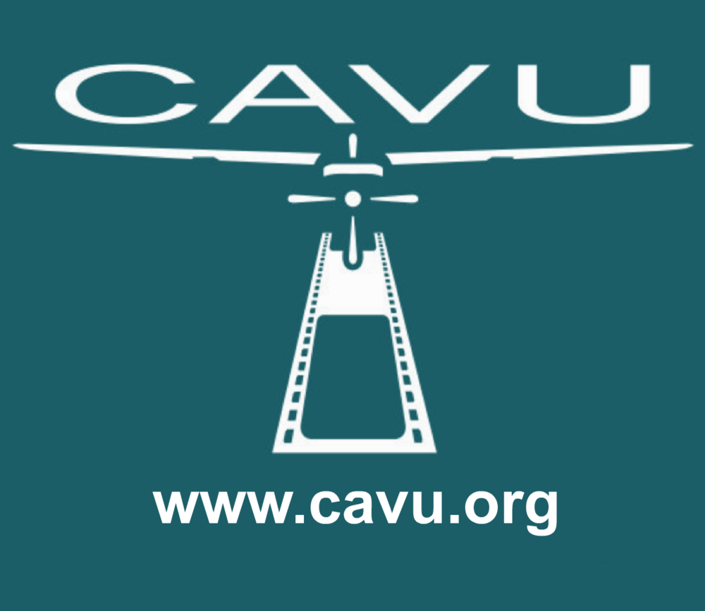 CAVU-sea-green.png