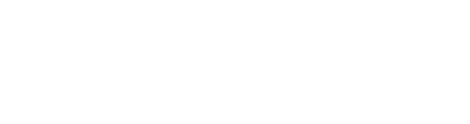 Avants_logo_White_large.png