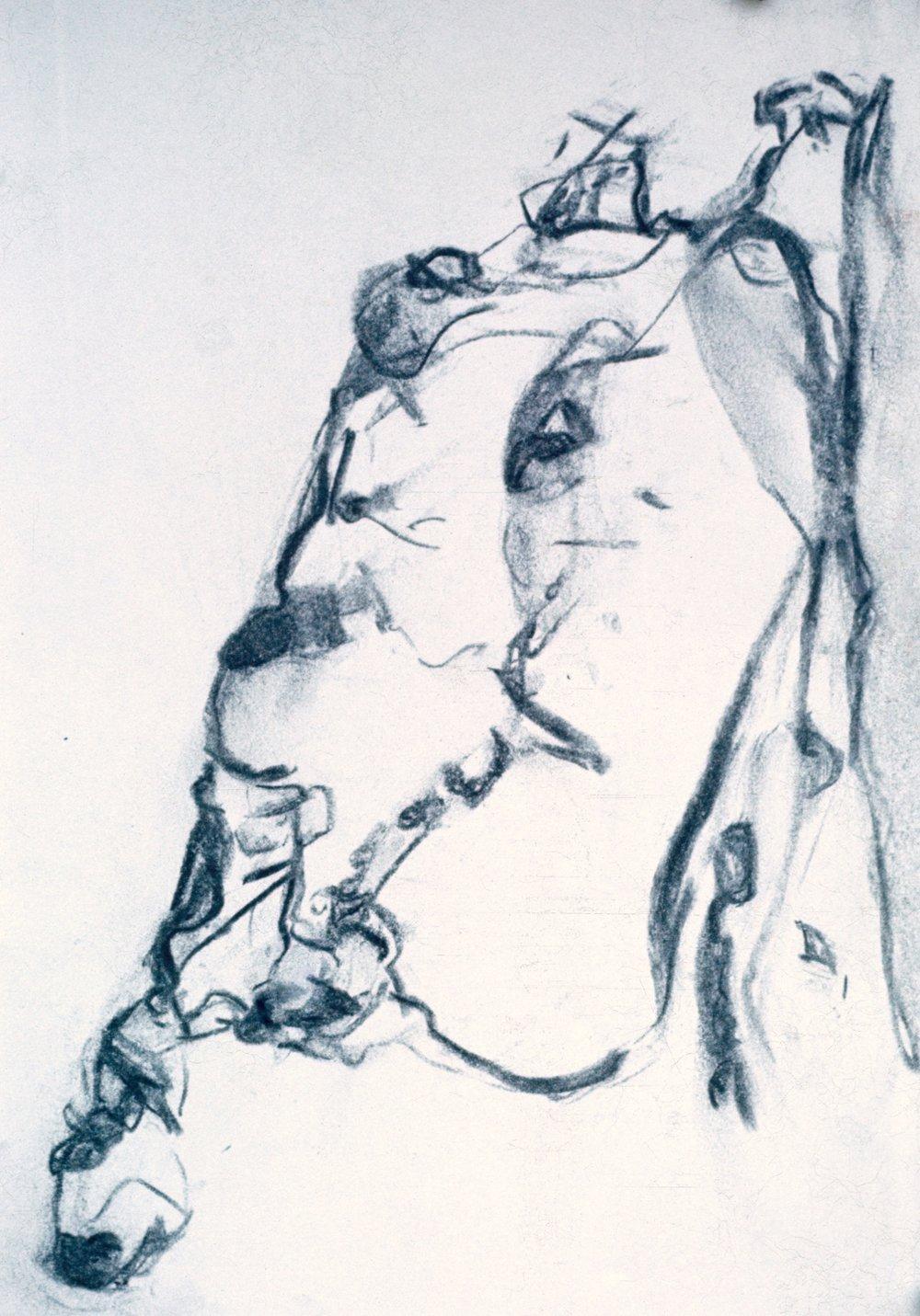1972-paper-charcoa9x12.jpeg