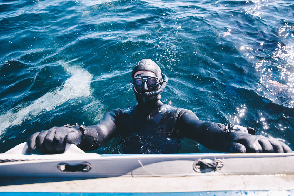 Into the Blue - Dive School