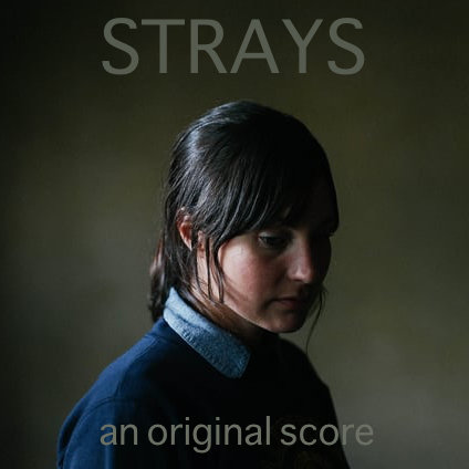 Strays-square-cover.jpg