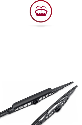 - Windshield ServicesSeeing clearly on the road is necessary. Mobile Lube Guys can replace windshield wiper blades and apply Rain-x on your front windshield to allow for optimal sight.