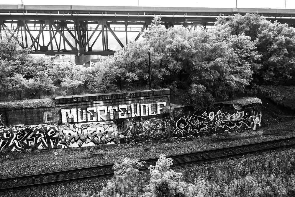 Chicago (17 of 72).jpg