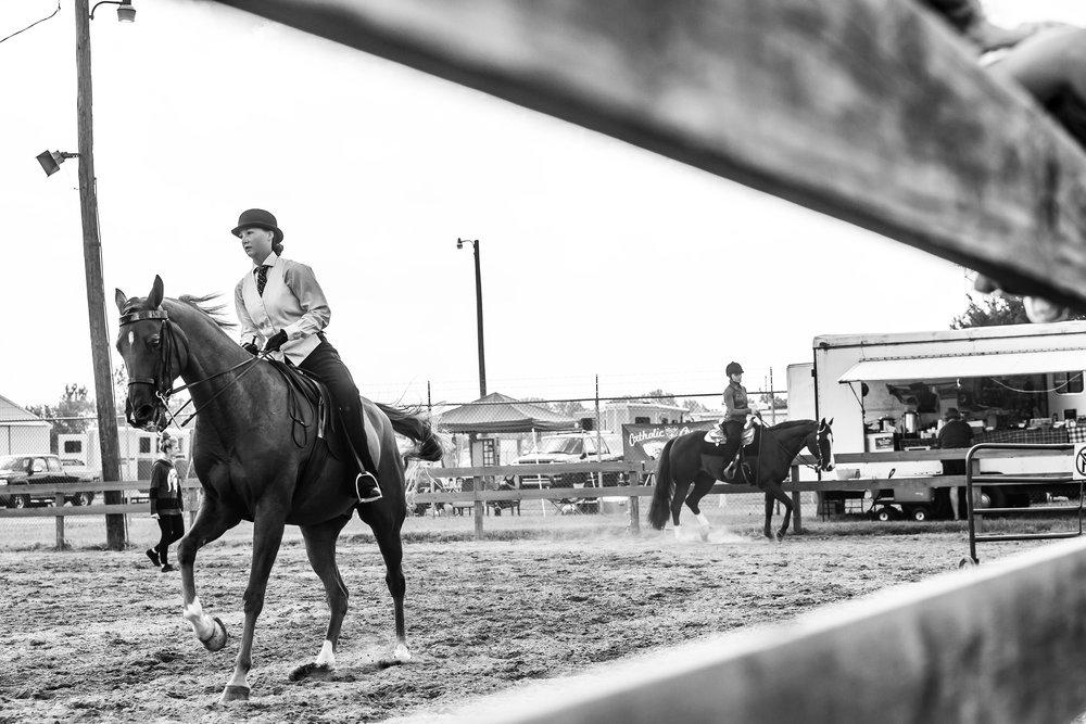 Andrea Horse (1 of 39).jpg