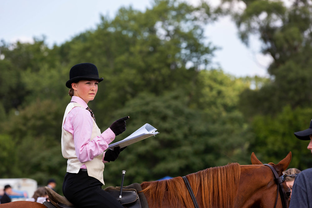 Andrea Horse (4 of 39).jpg