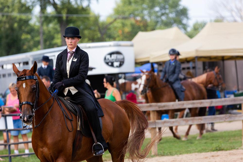 Andrea Horse (9 of 39).jpg