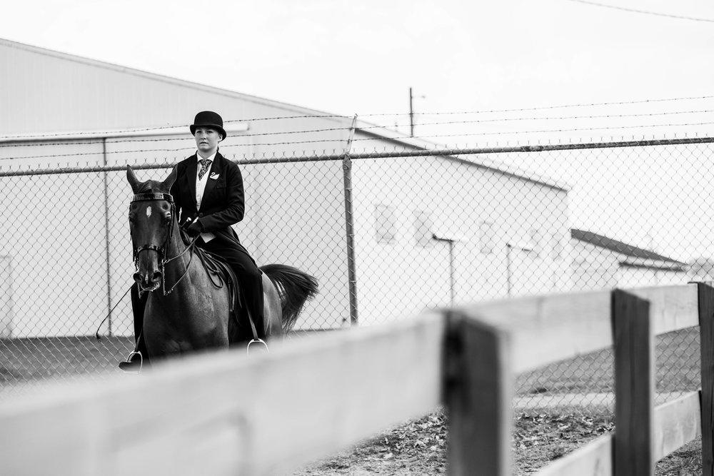 Andrea Horse (15 of 39).jpg