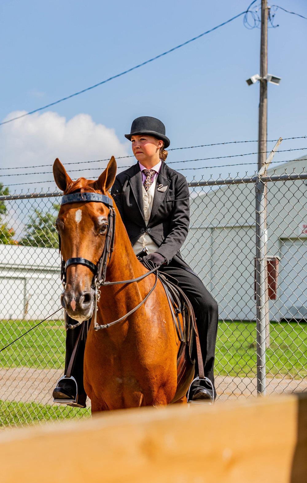 Andrea Horse (18 of 39).jpg