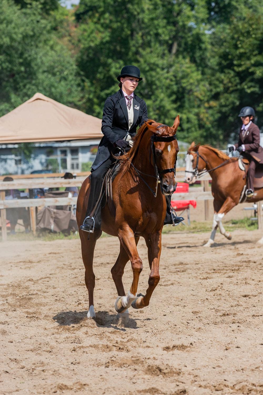 Andrea Horse (24 of 39).jpg