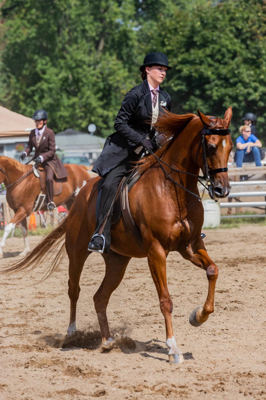 Andrea Horse (25 of 39).jpg