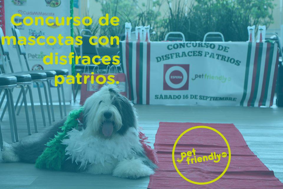 Concurso de mascotas con disfraces patrios 2017.