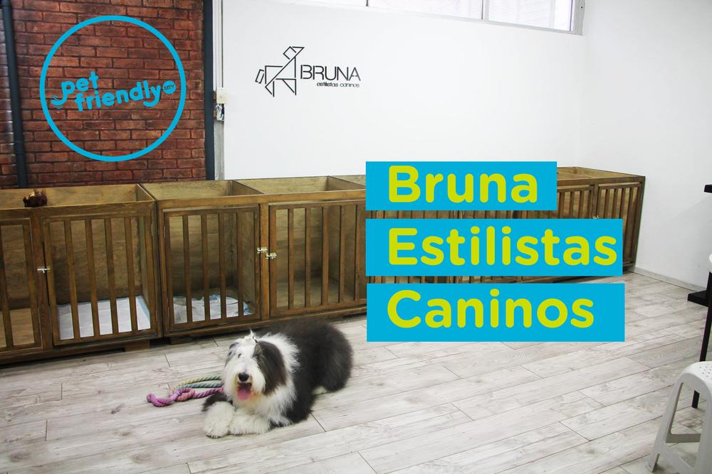Vicky visitando Bruna - Estlistas Caninos.