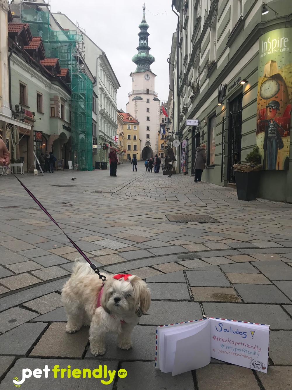 Sharona en Bratislava -