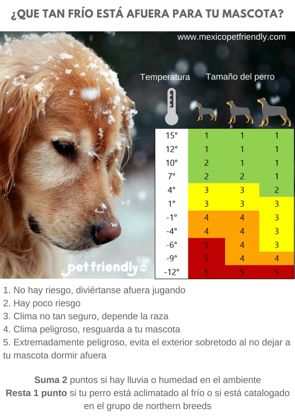 ¿Que tan frío está afuera para tu mascota_ (1).png