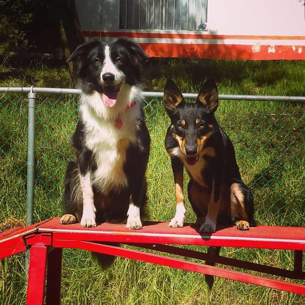 Keisy & Ciara