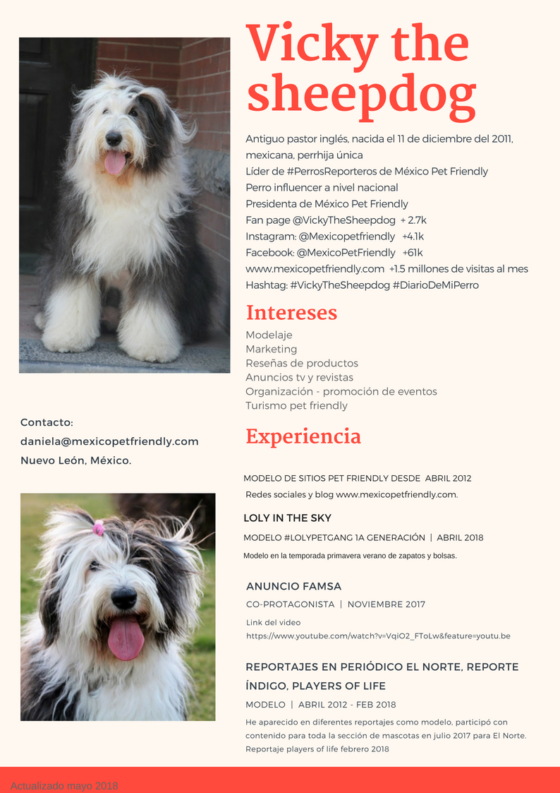 Vicky the sheepdog CV