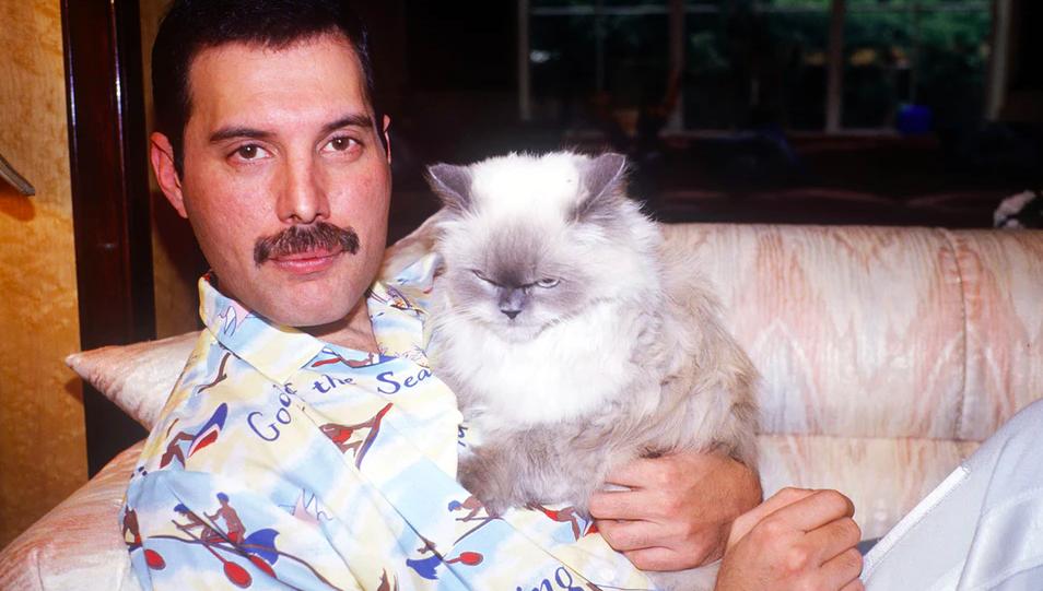 Freddie y Tiffany en 1988
