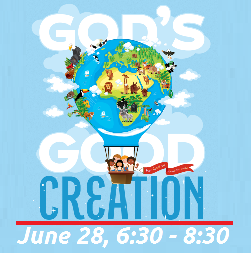 VBS Night.png