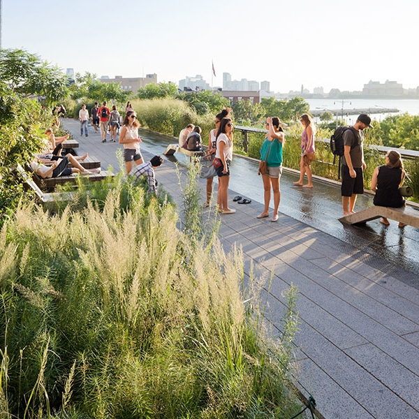 You Can Fix It: Making NYC Green Spaces Actually Enjoyable - Sunday, October 29th, 2017 from 11:30am-2:30pmLocation: Centre for Social Innovation (601 W 26th St #325)During this session, we'll enjoy a delicious lunch together and engage with patrons of the High Line as part of our experiment. Faculty: Marvin Vilma and Sara Weinreb