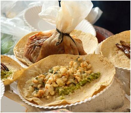Escamoles er en mexicansk delikatesse, bestående af hvide myrerlaver,som er blandt de mest populære retter med spiselige insekter
