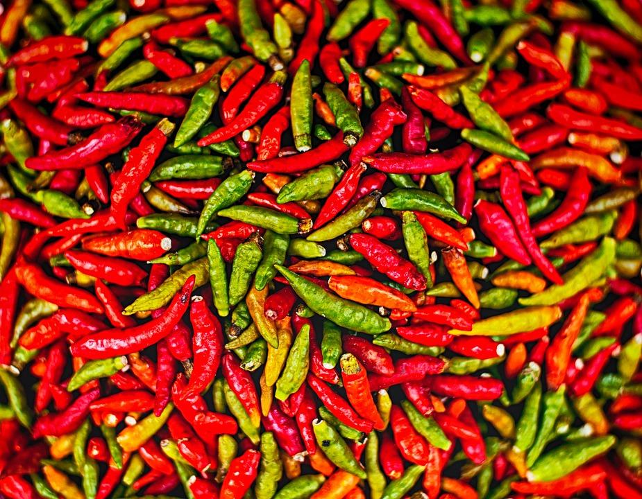 En blog om spiselige insekter