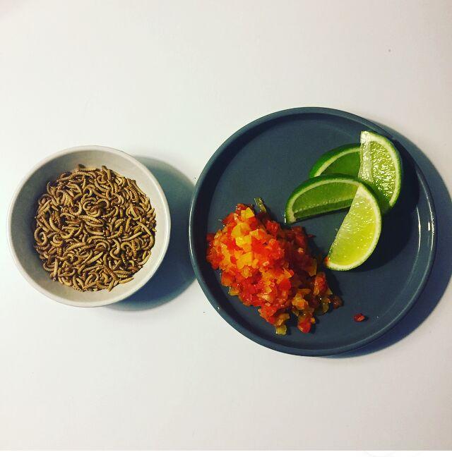 At lave mad med insekter kan både være en kulinarisk oplevelse, såvel som en sjov og inkluderende aktivitet